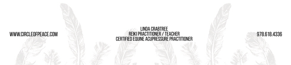 Circle of Peace | Equine Acupressure | Reiki for All Animals